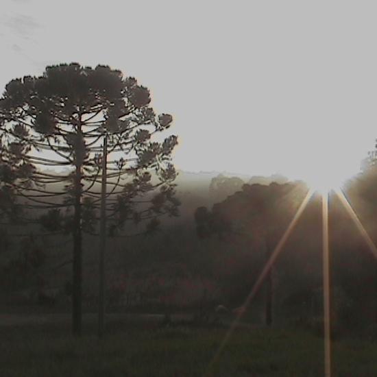 Psicodália 2012 - Nasce o sol