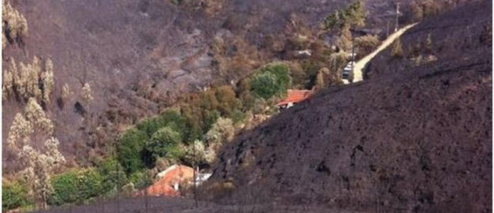 Incêndio Florestal em Portugal mata 64 pessoas